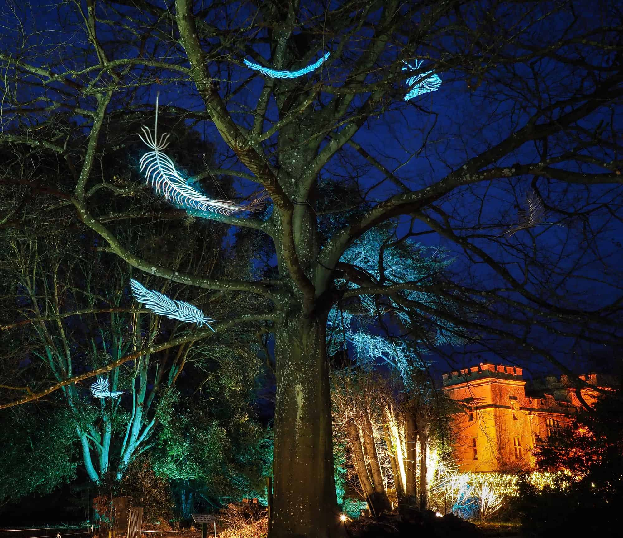2017 Sudeley Castle Spectacle of Light Photo Gallery 28
