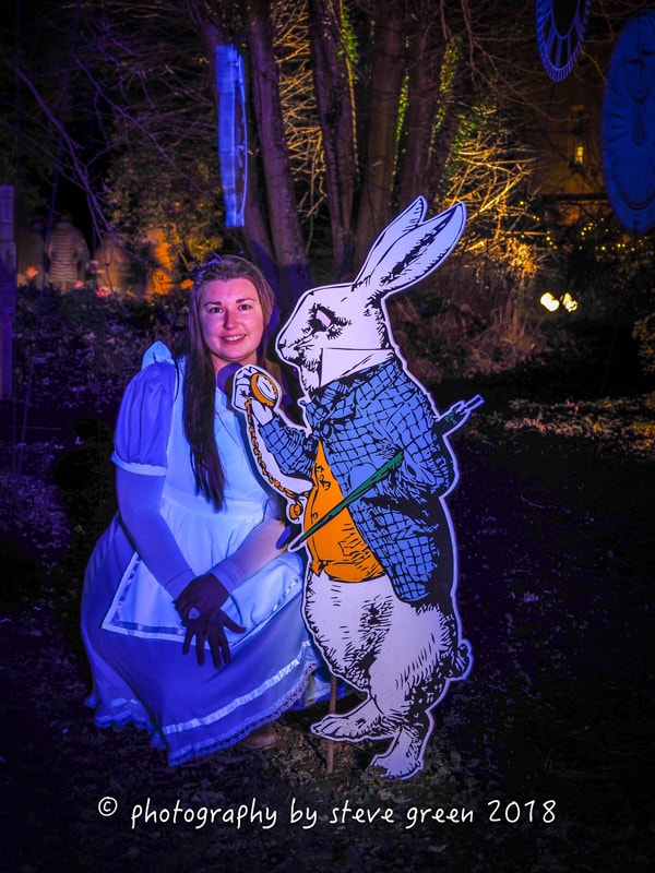 2018 Sudeley Castle Spectacle of Light Photo Gallery 10