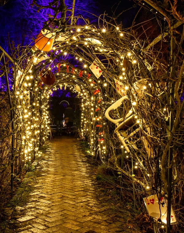 2018 Sudeley Castle Spectacle of Light Photo Gallery 12
