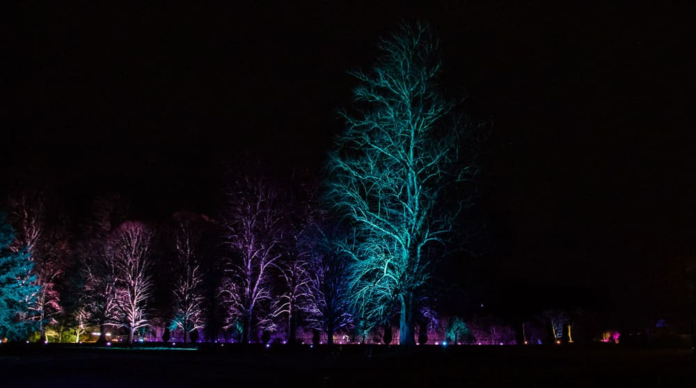 2016 Sudeley Castle Spectacle of Light - Stroud Camera Club 36