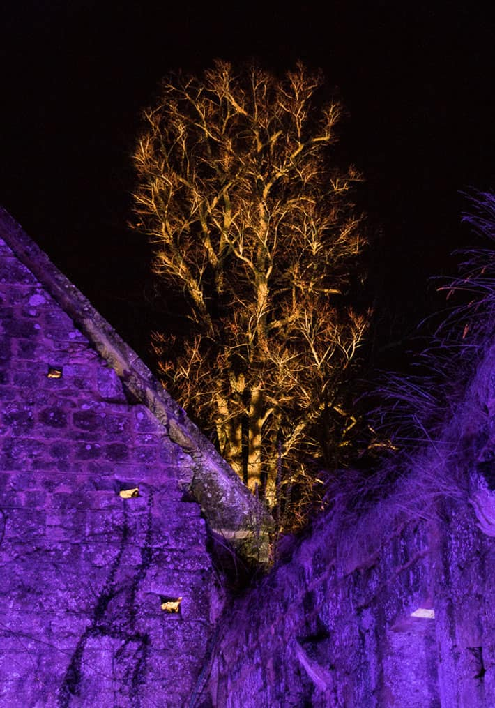 2016 Sudeley Castle Spectacle of Light - Stroud Camera Club 46
