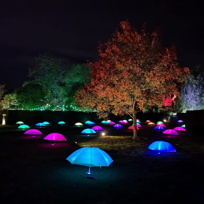 Rufford Abbey special lighting effects for Spectacle of Light