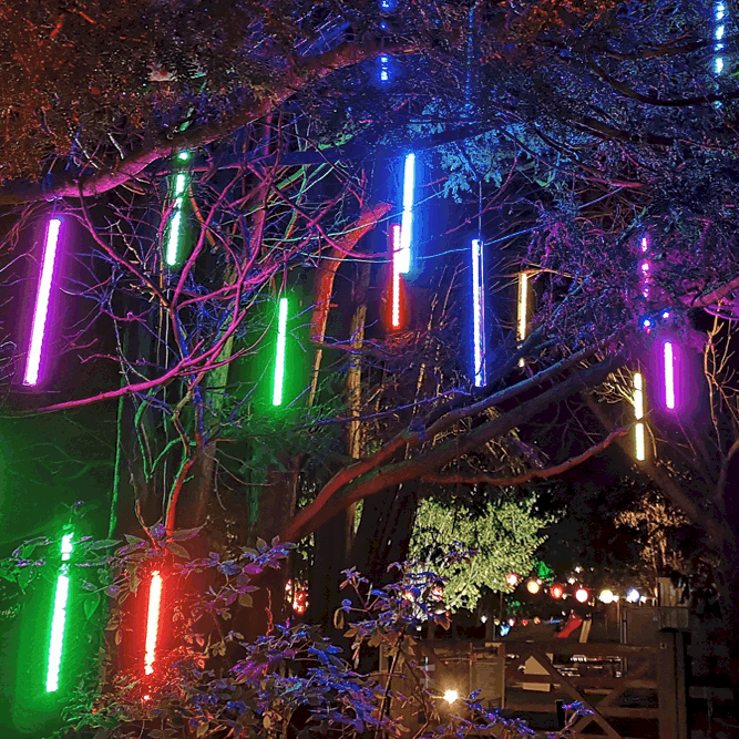Spectacle of Light Haughley Park tree strip lights 2021